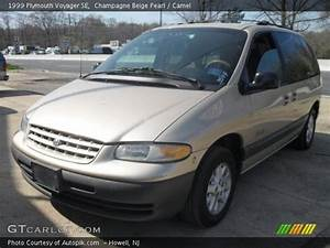 Champagne Beige Pearl - 1999 Plymouth Voyager Se