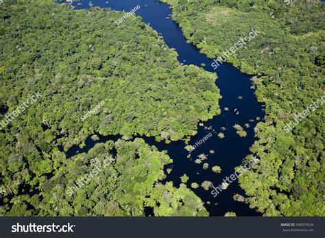 amazon river aerial photography stock photo
