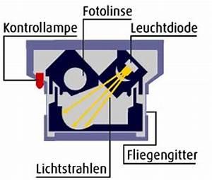Wer Muss Rauchmelder Anbringen : rauchmelder selbst anbringen brandbek mpfung sprinkler ~ Lizthompson.info Haus und Dekorationen