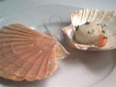 cuisiner les coquilles st jacques avec corail recettes de coquilles jacques 15