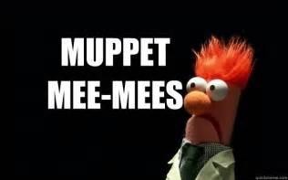 Beaker Meme - muppet mee mees beaker meme quickmeme