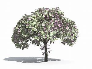 Geldbaum Feng Shui : arbre d 39 argent d 39 euro image libre de droits image 13192086 ~ Bigdaddyawards.com Haus und Dekorationen