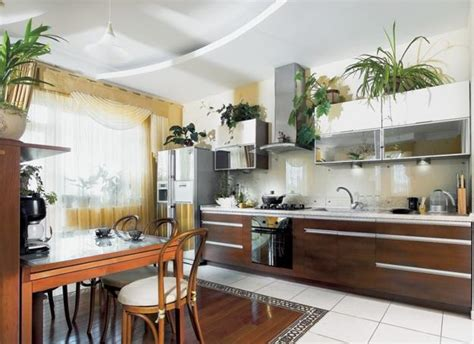 Decorating Kitchen by How To Decorate Kitchen With Green Indoor Plants And Save
