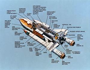 Space Shuttle Cutaway - Pics about space