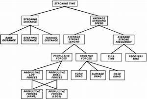 Diagram    Basic Factors That Determine Stroking Time