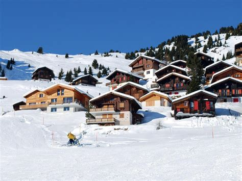 residence les chalets de l isard 19 5 les angles location vacances ski les angles ski planet