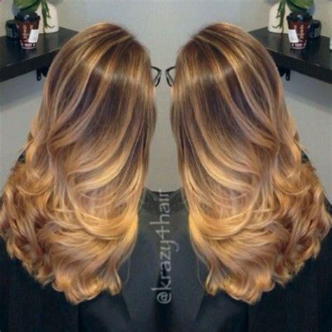 images  hair color formulas  inoa