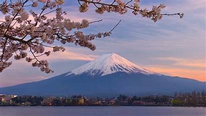 Cherry Fuji Japan Blossoms Mount Blossom Mt