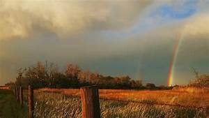 Rainbow, Wallpapers