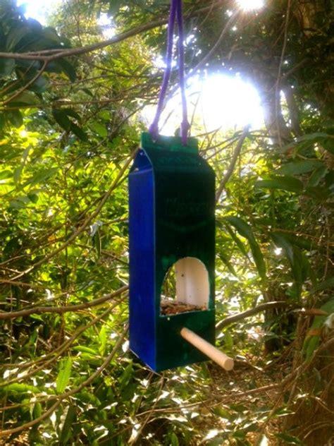 diy birdfeeders   fill  garden  birds
