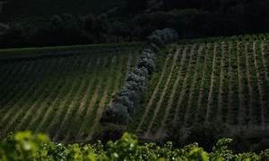 Paysage De Roaix - Juillet 2011