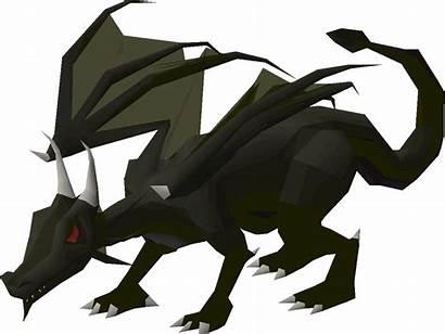 Dragon Osrs Elvarg Wiki Dragons Slayer Runescape
