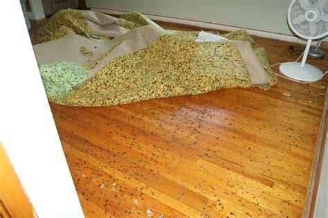 cleaning how do i remove stuck melted foam from carpet on hardwood floor home - Hardwood Floors Under Carpet