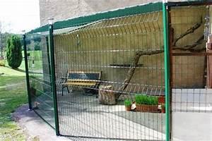 Construire Enclos Pour Chats : jardin securis recourb a 60 ou 90 degre chats forum animaux ~ Melissatoandfro.com Idées de Décoration