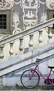 Pink Bike   Pisa, Italy   Lissa**   Flickr