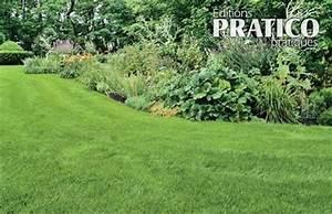 Gazon Pour L Ombre : une semence de pelouse pour l 39 ombre trucs et conseils ~ Premium-room.com Idées de Décoration