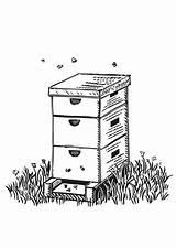 Coloring Beehive Box Honey Pages Shaped Farm Bee Hive Whodunit Cartoon Spring Crystal Btlt Netart Land Milk sketch template