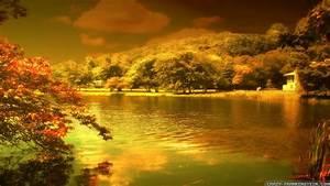 Beautiful Autumn HD Wallpapers 1920x1080