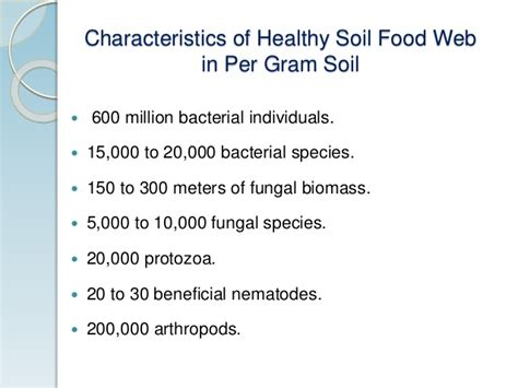 cuisine characteristics soil food web and its utility for ecology