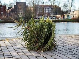 Weihnachtsbaum Richtig Schmücken : b umchen raus so entsorgen sie den weihnachtsbaum richtig ~ Buech-reservation.com Haus und Dekorationen