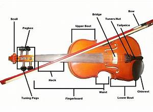 The Basics Of Fiddle Build  Construction  And Parts