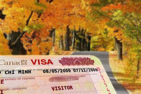 phi dich vu xin visa canada visa thăm th 226 n thăm con đang học tại canada webduhoc vn