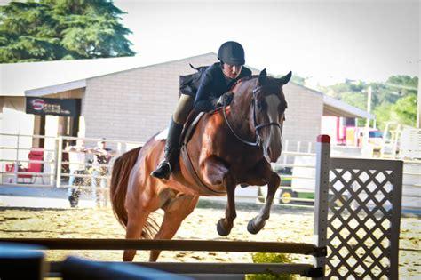 horse quarter horses jumping county paso robles 1960 luis obispo san slo showcase fair place