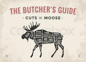 Diagram Of Moose Cuts