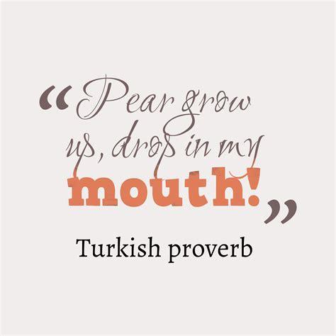 turkish Wisdom About Lazy