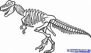 How to Draw a Dinosaur Skeleton, Dinosaur Skeleton, Step ...