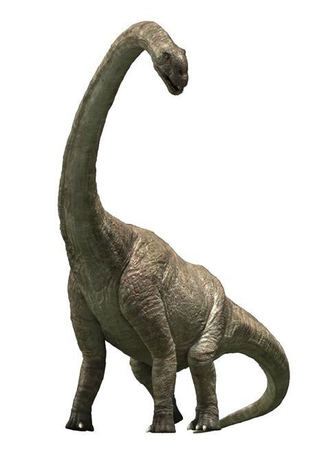 tarbosaurus    picture gallery