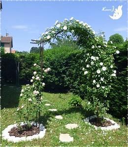 Arceau De Jardin : arche jardin avec les meilleures collections d 39 images ~ Premium-room.com Idées de Décoration