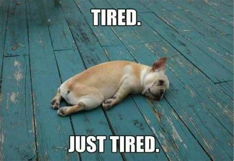 So Tired Meme - girl meets world so sleepy
