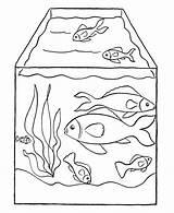 Coloring Aquarium Fish Pages Printable Tank Pet Popular sketch template