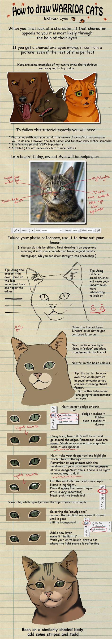warrior cats images  pinterest