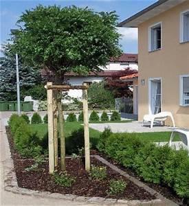 Kleine Bäume Für Vorgarten : monsterhaus b ume f r kleine g rten ~ Michelbontemps.com Haus und Dekorationen