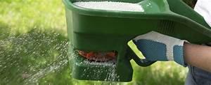 Was Hilft Gegen Klee Im Rasen : hornmehl gegen klee spritzmittel gegen klee pflanzen f r nassen boden die besten tipps gegen ~ Watch28wear.com Haus und Dekorationen