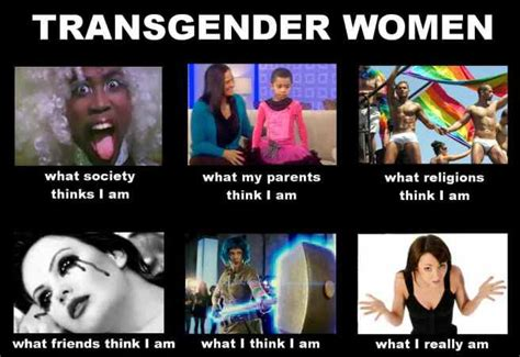 Trans Memes - i couldn t lie to get myself fame and fo by dave pelzer like success