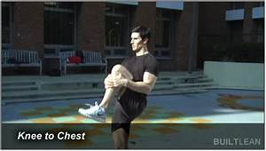 Dynamic Stretching Routine  Best Full