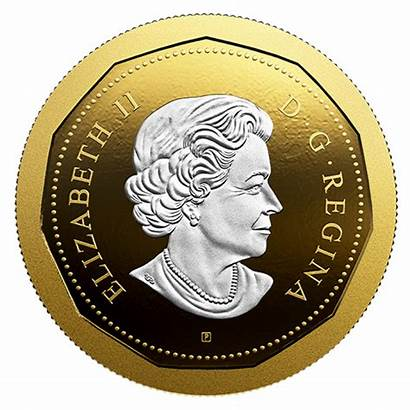 Coin Loon Dollar Flying Series Gold Canadian