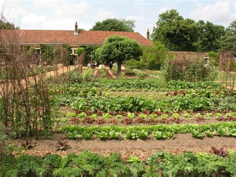 Advantages To Using Sprinklers In Your Vegetable Garden
