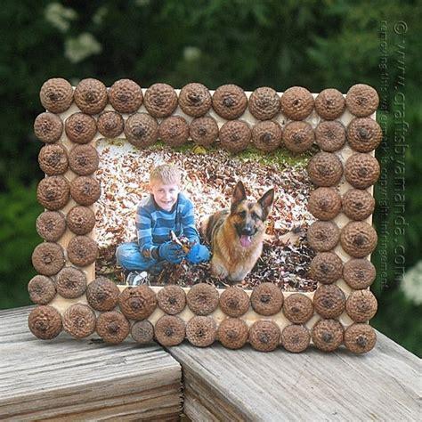 acorn frame crafts  amanda