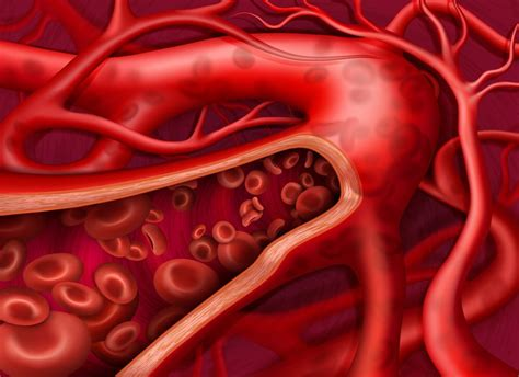 Super 10 Tips for Better Blood Circulation in Body | Newz ...