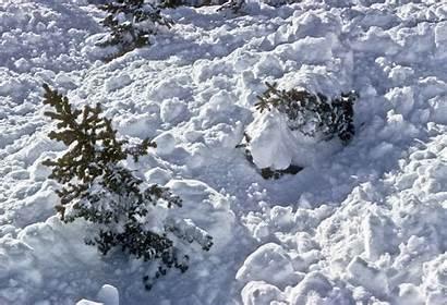 Avalanche Colorado Snow Geological Hazards