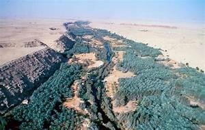 Wadi Hanifa Wetlands