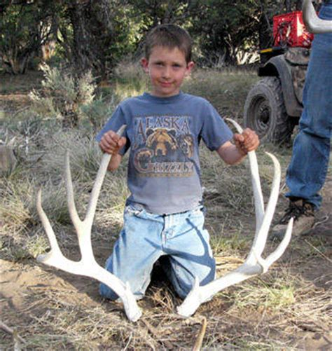 mule deer elk and western big game hunting tips