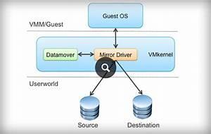 Vsphere Storage Vmotion  Storage Management  U0026 Migration