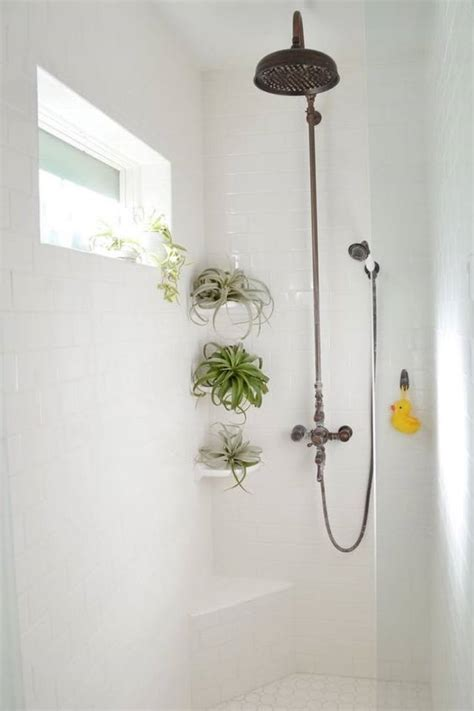 shower plants create tropical spa experience wellgood