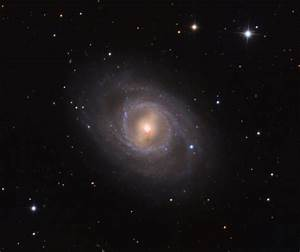 Messier 95 with Supernova | Anne's Astronomy News
