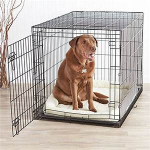 best 25 dog kennels for sale ideas on pinterest dog With cheap dog crates for small dogs
